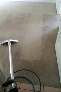 One cleaning stroke through a dirty carpet to show the difference
