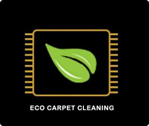 environmentally friendly carpet cleaning sunshine coast