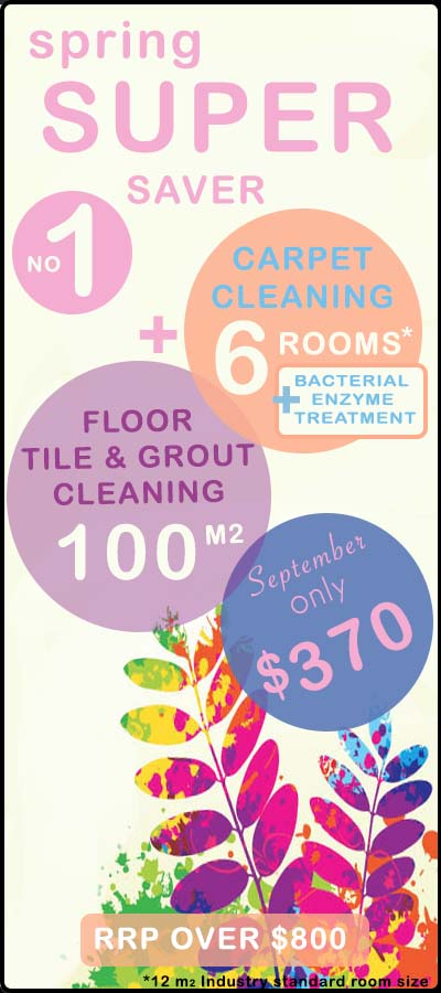 SPRING carpet & tile cleaning