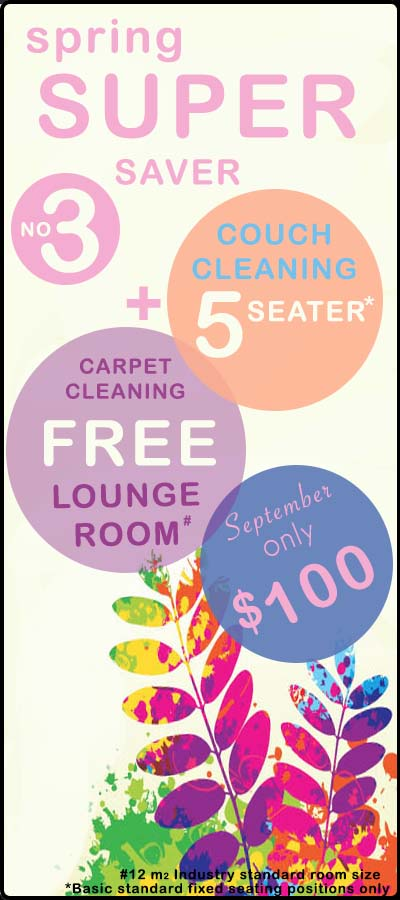 SPRING couch cleaning deal